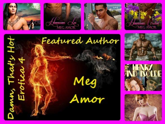 Meg Amor Banner 2