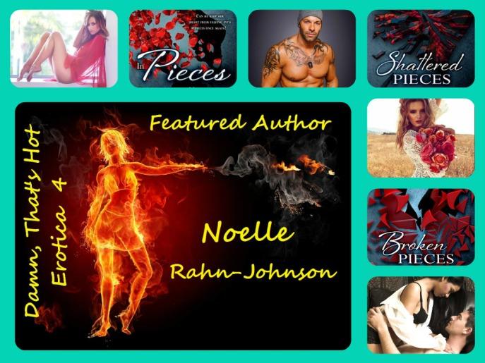 Noelle Rahn-Johnson Banner 2